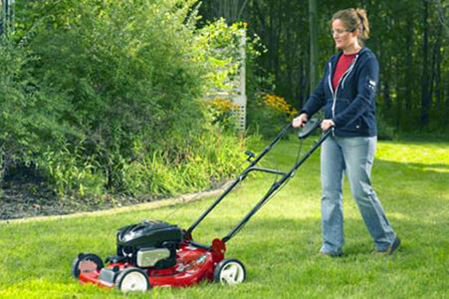 Picture for category Lawn & Gardens