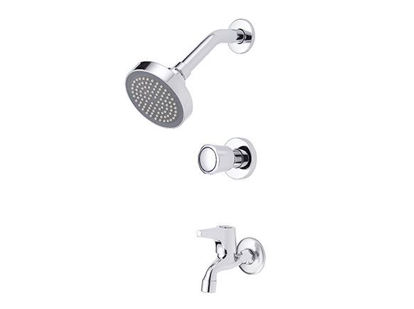 Picture of Eurostream Two Round Handle with 4 inch showerhead
