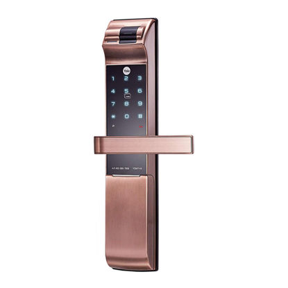 Picture of Bluetooth And Bio-Metric Mortise Lock YDM7116