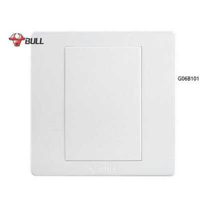 Picture of Bull Blank Plate (White), G06B101