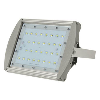 Picture of Firefly Led Floodlight EFL2030CW